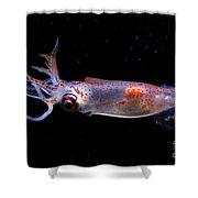 Clawed Armhook Squid Shower Curtain