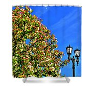 Clear Skies Shower Curtain