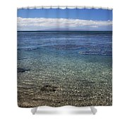 Clear Water And Coral Shower Curtain