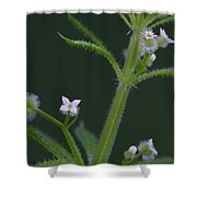 Cleavers Shower Curtain