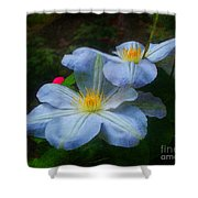 Clematis Altered Shower Curtain
