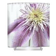 Clematis Josephine Shower Curtain