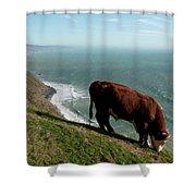 Cliffhanger Shower Curtain