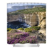 Cliffs Along Ocean With Wildflowers Shower Curtain