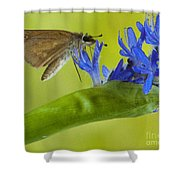 Climb Up For Lunch Shower Curtain