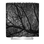 Climbing Escaped Scratches  Shower Curtain
