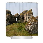 Clonmacnoise Castle Ruin - Ireland Shower Curtain