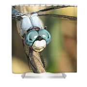 Close Up Blue Eyes Shower Curtain