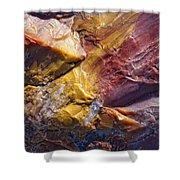 Close Up Of Petrified Wood, Petrified Shower Curtain