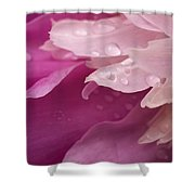 Close-up Of Pink Flower Shower Curtain