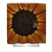 Close View Of A Bee On A Sunflower Shower Curtain