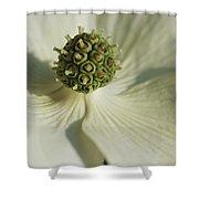 Close View Of A Dogwood Blossom Shower Curtain