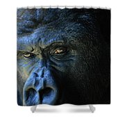 Close View Of A Gorilla Gorilla Gorilla Shower Curtain