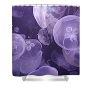 Close View Of Jellyfish Shower Curtain