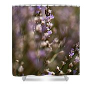 Close View Of Purple Wildflowers Shower Curtain