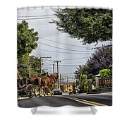 Closed On Sundays 2 - Amish Country Shower Curtain