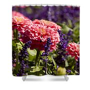 Closeup Of Colorful Flowers In Butchart Shower Curtain