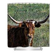Closeup Of Texas Longhorn Shower Curtain