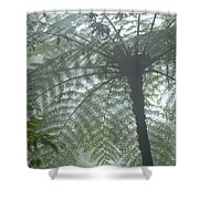 Cloud Forest Ceiling, Costa Rica Shower Curtain