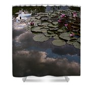 Clouded Pond Shower Curtain