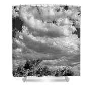 Clouds Rising Bw Palm Springs Shower Curtain