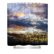 Cloudy Sunset With Bare Trees And Birds Flying Shower Curtain