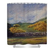 Clover Fields Shower Curtain