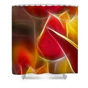 Cluisiana Tulips Triptych Panel 1 Shower Curtain