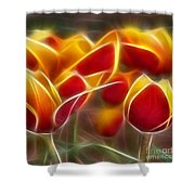 Cluisiana Tulips Triptych Panel 2 Shower Curtain