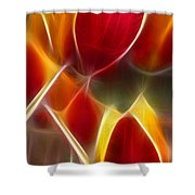 Cluisiana Tulips Triptych Panel 3 Shower Curtain