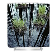Clumps Of Grass In Water Reflecting Shower Curtain
