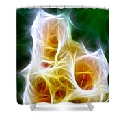 Cluster Of Gladiolas Triptych Panel 1 Shower Curtain