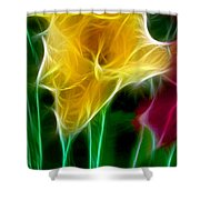 Cluster Of Gladiolas Triptych Panel 3 Shower Curtain