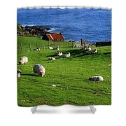Co Cork, Beara Peninsula Shower Curtain