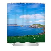 Co Kerry, Dingle Peninsula, Slea Head & Shower Curtain