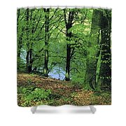 Co Kerry, Standing Stone On Clogher Shower Curtain