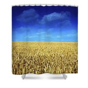 Co Louth,irelandwheat Field Shower Curtain