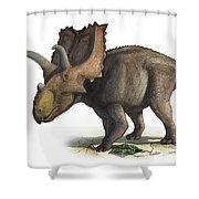 Coahuilaceratops Magnacuerna Shower Curtain
