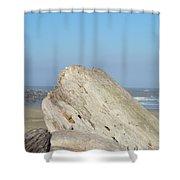 Coastal Art Prints Driftwood Ocean Beach Sky Shower Curtain by Baslee Troutman