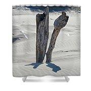 Coastal Driftwood Art Prints Ocean Shore Sand Beach Shower Curtain