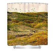 Coastal Plants On Dunes Shower Curtain