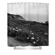 Coastal View Mist - Black And White Shower Curtain