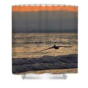 Coasting Shower Curtain