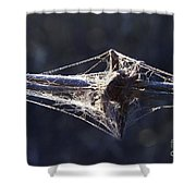 Cobwebs And Wire Shower Curtain