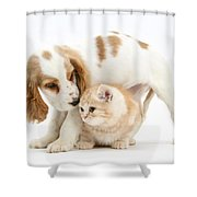 Cocker Spaniel And Kitten Shower Curtain