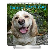 Cocker Spaniel Birthday Shower Curtain