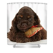 Cocker Spaniel Pup With Chew Treat Shower Curtain