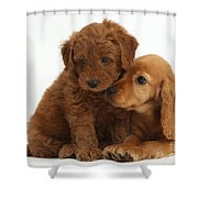 Cocker Spaniel Puppy And Goldendoodle Shower Curtain