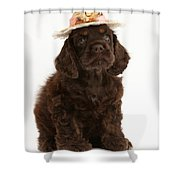 Cocker Spaniel Wearing A Hat Shower Curtain
