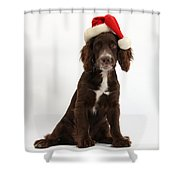 Cocker Spaniel With Santa Hat Shower Curtain